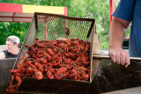 LSU-alumni-Dallas-crawfish-boil-51